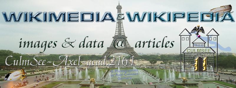 Wikipedia user header