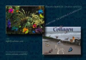 Aquarium und Strandleben, vervielfacht