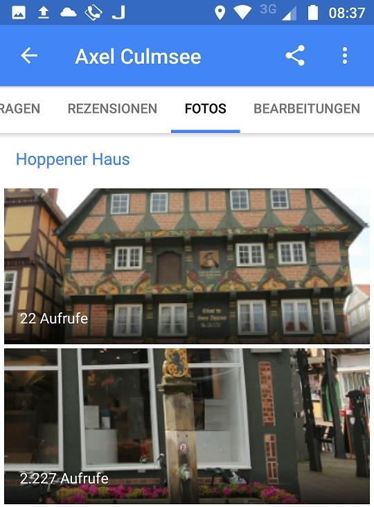 Celle Hoppener Haus mit Brunnen und vergoldeter Stadt-Wappen-Loewen-Figur