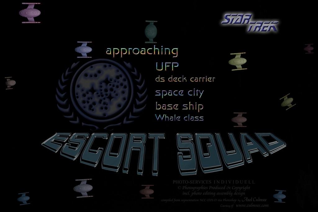 escort squad U.S.S. CETACEANIAN   NCC-24917