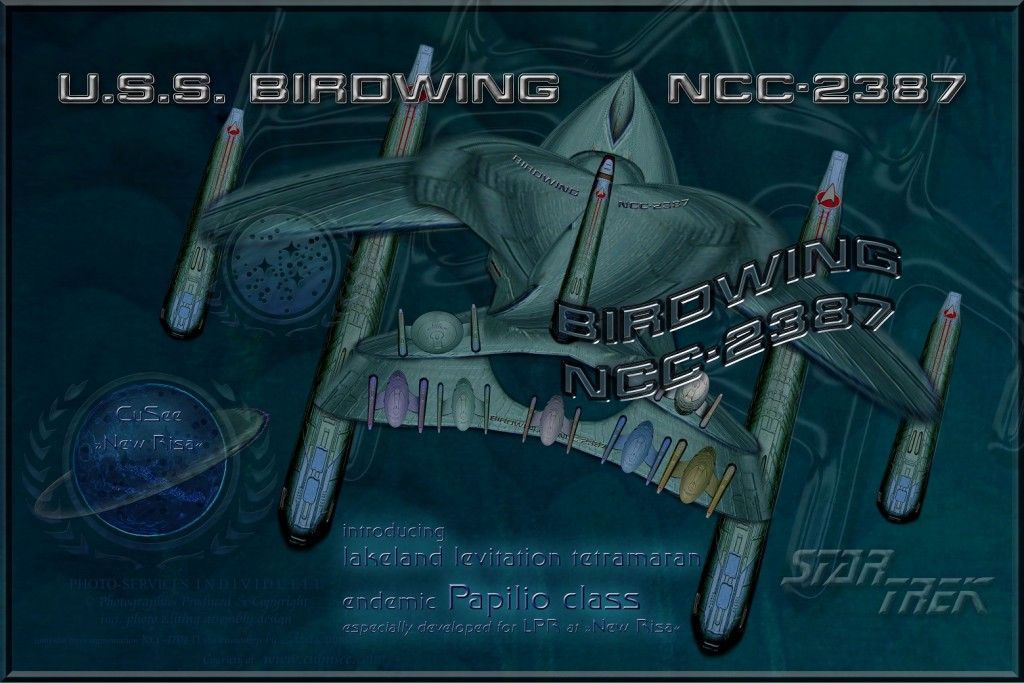 BIRDWING NCC-2387