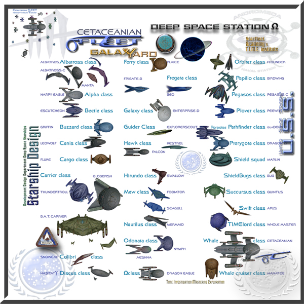 Starfleet starships survey