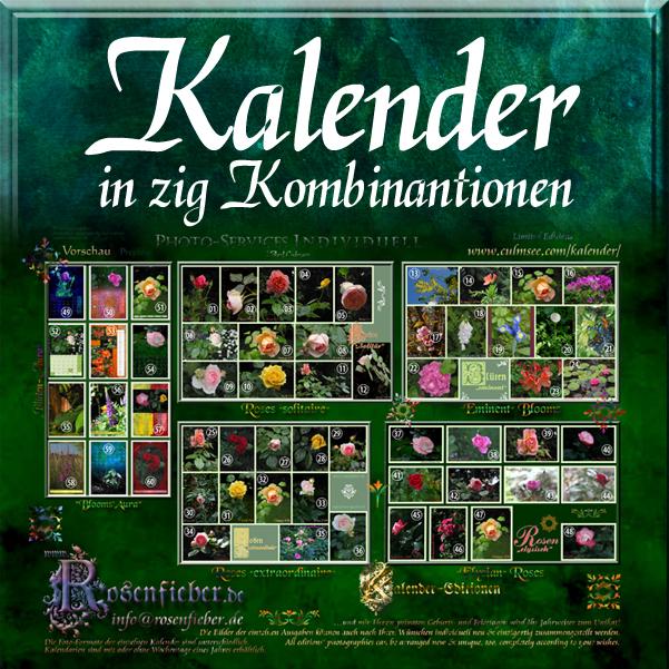Kalender-Editionen
