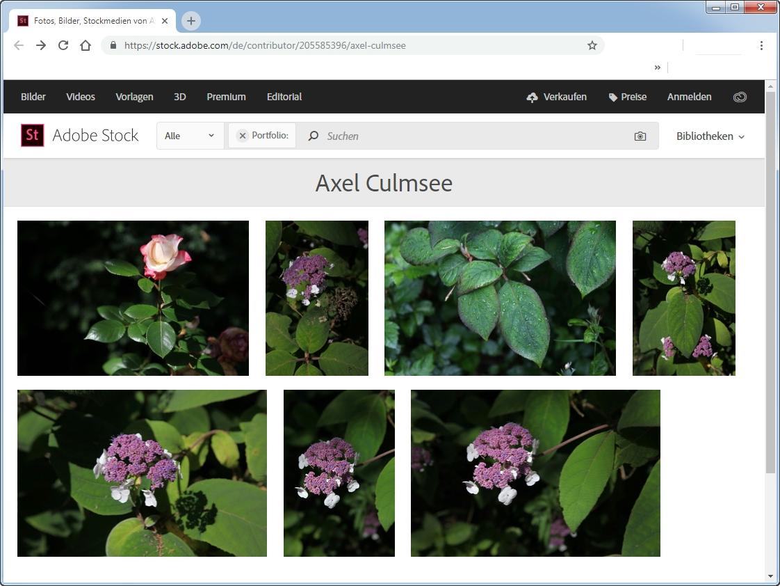 Axel Culmsee at Adobe Stock