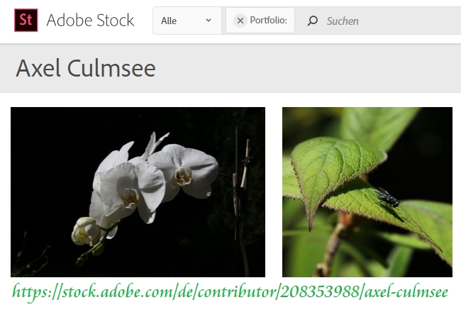Adobe Stock Axel Culmsee