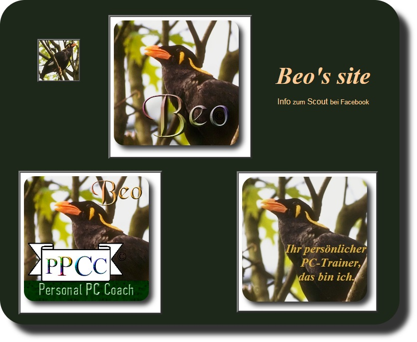 Beo Personal PC Coach