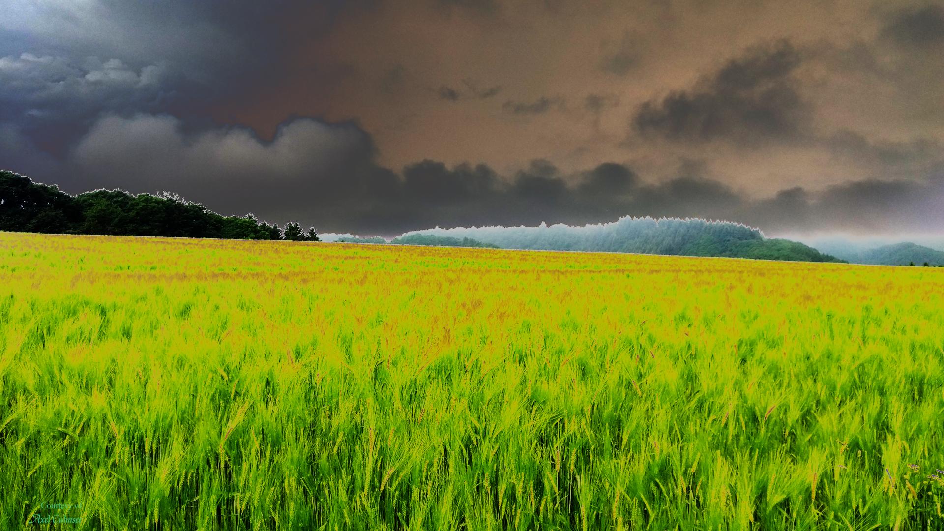 Westerwald solarized deep stormy