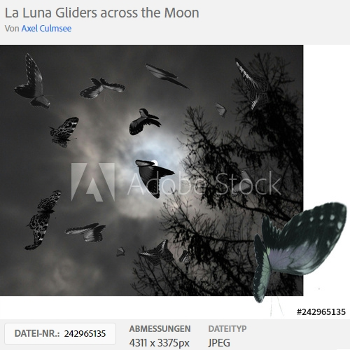 Adobe Stock Photo butterflies across Moon by Axel Culmsee
