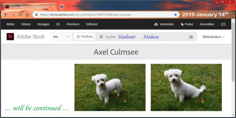 Adobe Stock Photos Maltese by Axel Culmsee