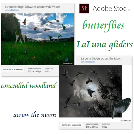 Adobe Stock Photos edited by Axel Culmsee