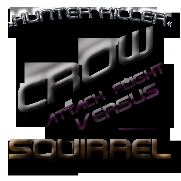 Crow vs Squirrel attack flight