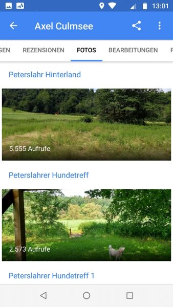 Local Guide Google Maps Peterslahr Hundetreff 2k views