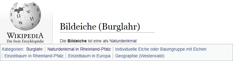 Bildeiche Burglahr im Wikipedia Kategorien-Pool