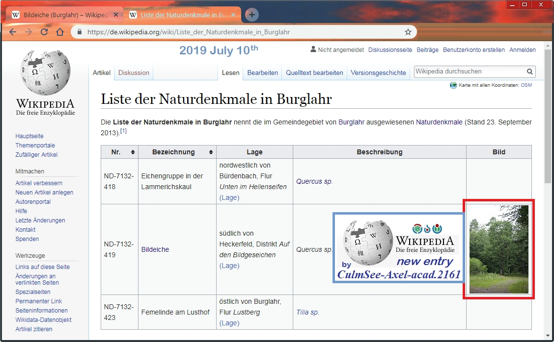 Wikipedia Liste der Naturdenkmale in Burglahr