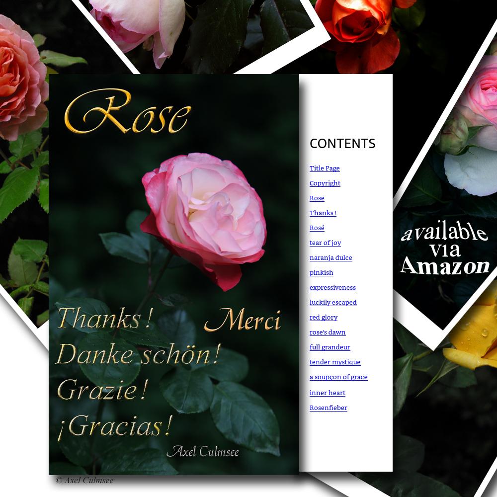 Vorschau einiger Seiten meines Buches Rose Merci Amazon kdp Edition