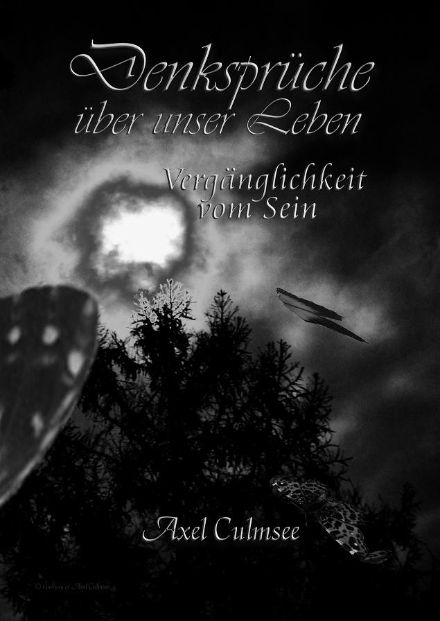 Amazon Buch Cover front Axel Culmsee Denksprueche ueber unser Leben Vergaenglichkeit vom Sein