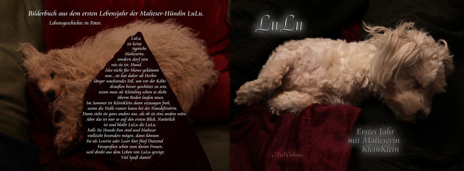 LuLu, Edition Print, Erstes Jahr mit Malteserin KleinKlein
