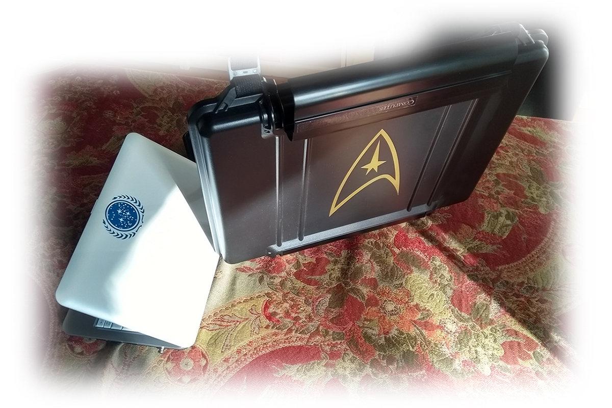 Star Trek netbook and its case