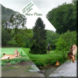 concealed 40 degrees valley at New Risa