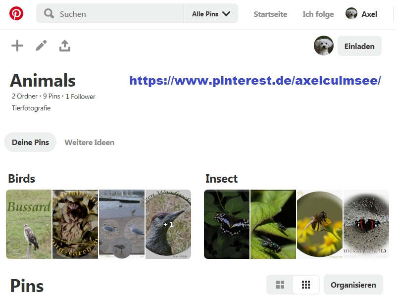 Pinterest Axel Culmsee Animals Status 29.11.2019