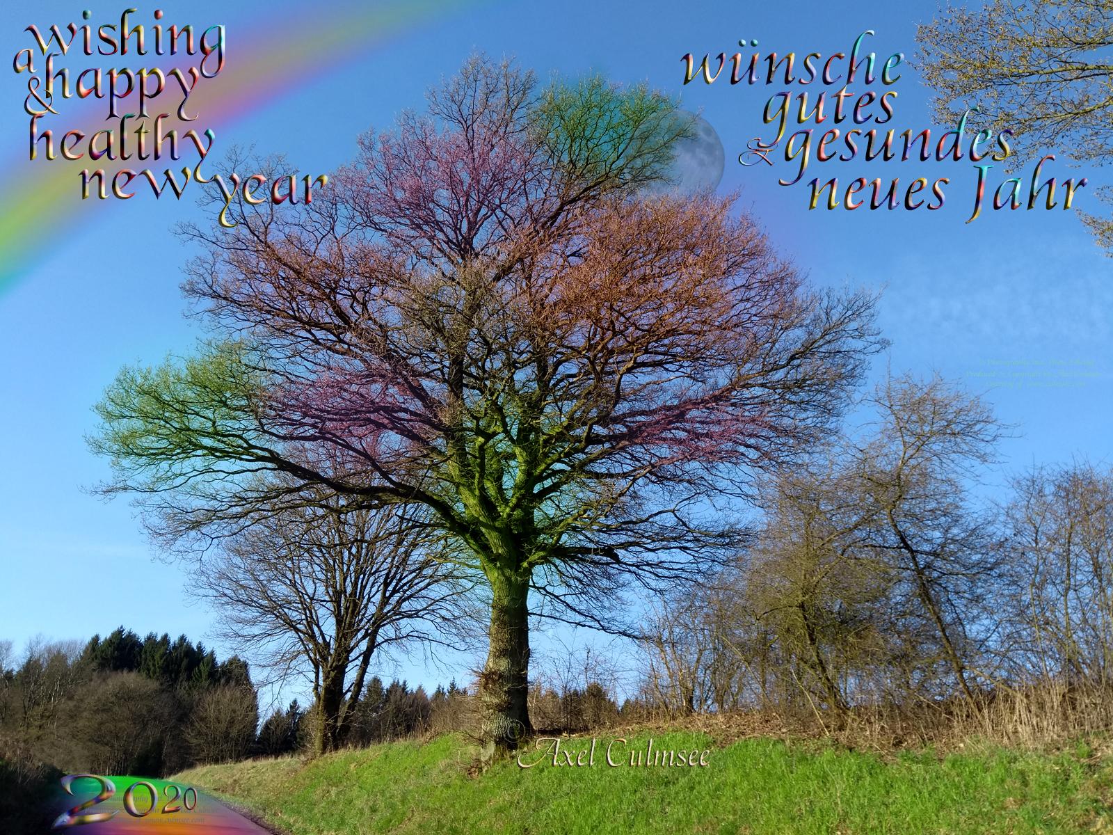 wishing a happy and healty new year 2020 - wuensche gutes und gesundes neues Jahr 2020