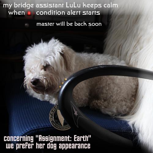 assistant LuLu ist bridge guardian