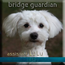 LuLu bridge guardian
