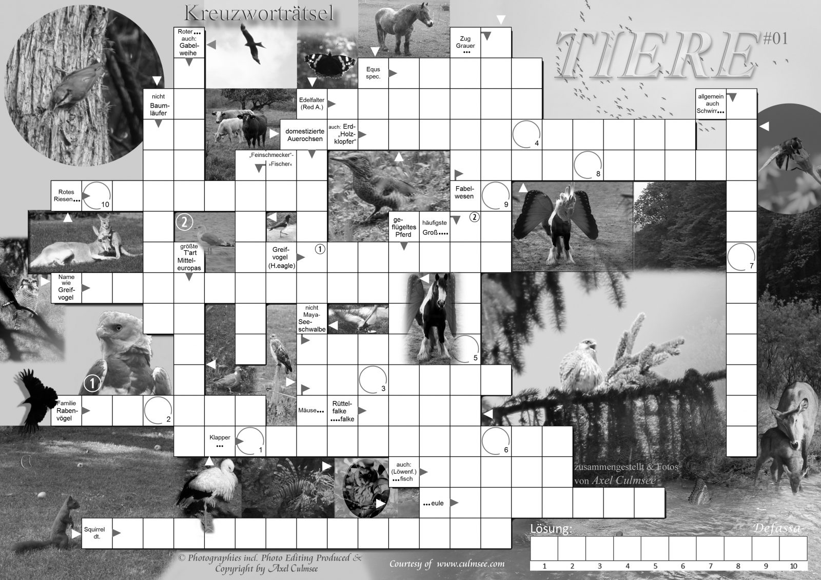 Tiere 01 crossword photos (C) Axel Culmsee