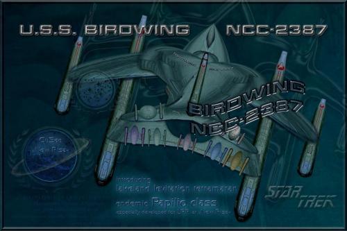 BIRDWING NCC-2387