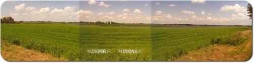 Chelmza 2001  1-01A R