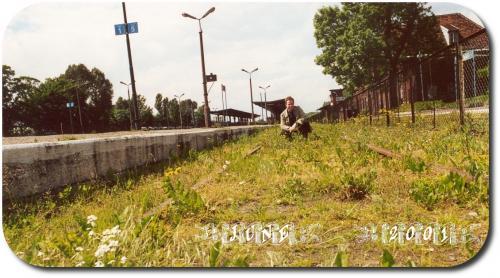 Chelmza 2001  3-33A