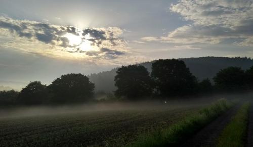 nebel-westerwald 2017-05-29 f