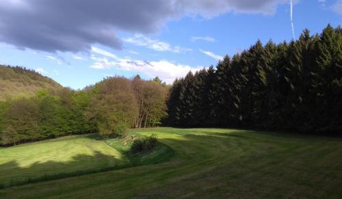 westerwald 2017-05-13 b