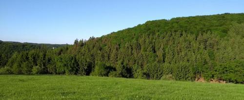 westerwald 2017-05-26 b
