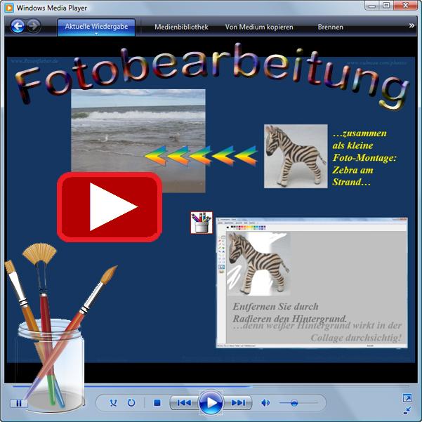 Demo-Video Zebra am Strand