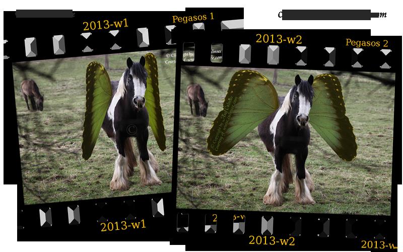 Pegasus slides