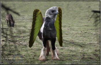 Hippogryph warnt