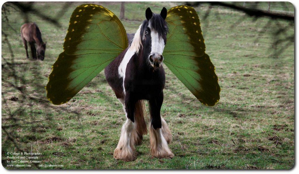 Pegasus zeigt ausgebreitete Flügel