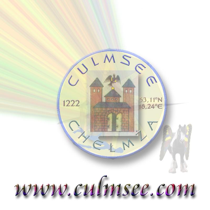 seal badge Culmsee Chelmza Academy Pegasus