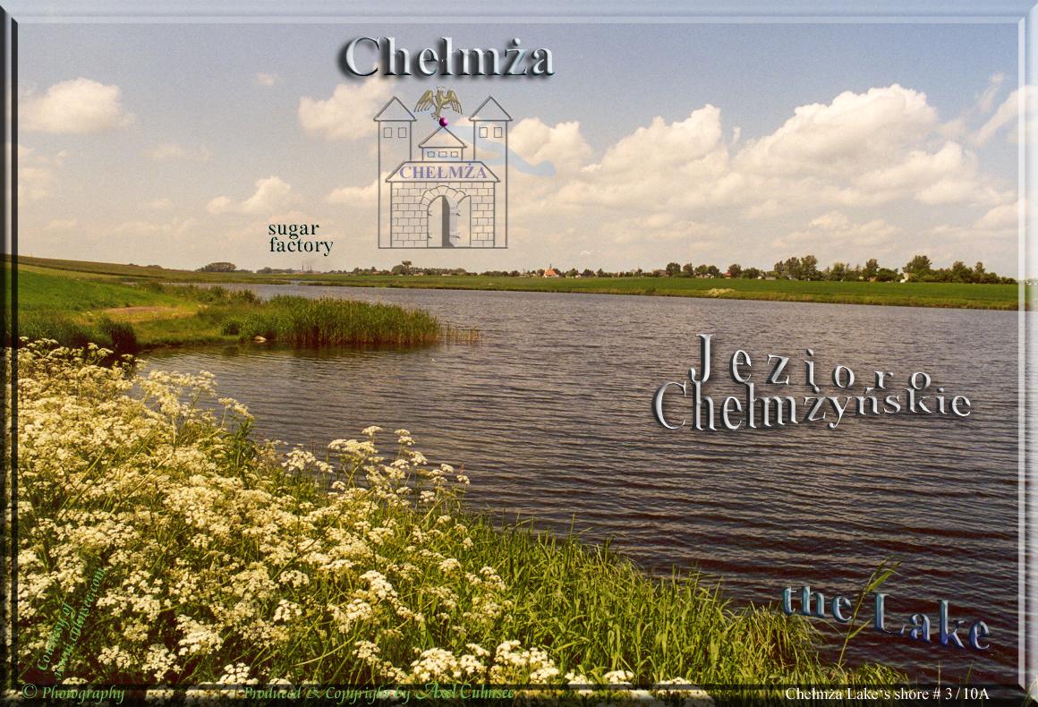 shore Jezioro Chelmzynskie, Chelmza June 2001