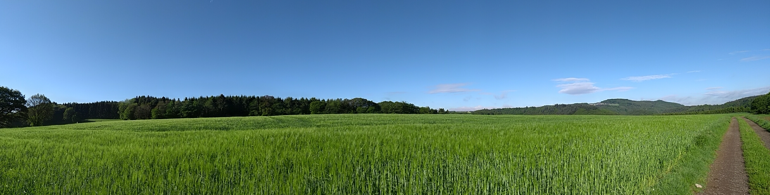 Westerwald Panorama