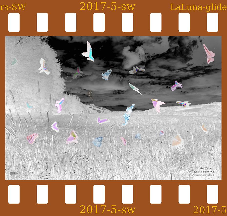 negative LaLuna gliders Westerwald b-a-w