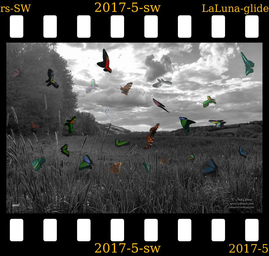 slide LaLuna gliders Westerwald b-a-w