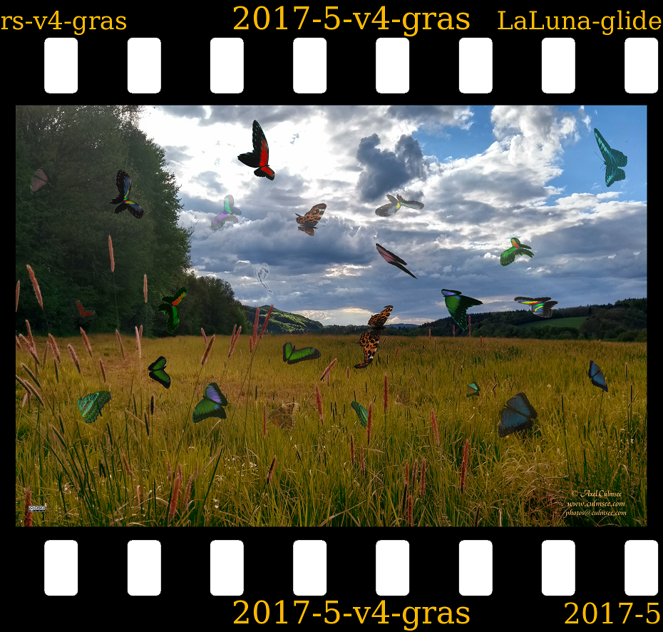 slide LaLuna gliders Westerwald gras field