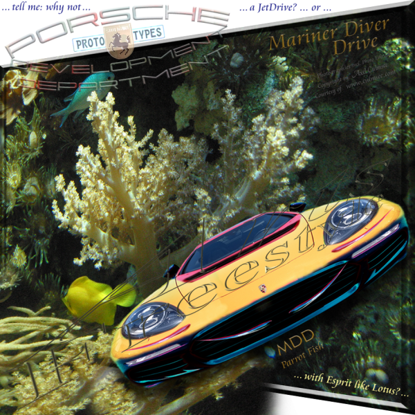 Porsche MarinerDiver Drive Parrot Fish ArtsFreestyle