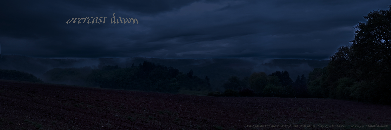 FogHills overcast dawn