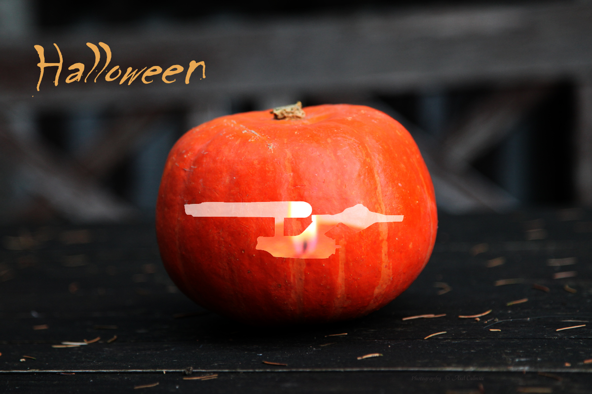 cucurbit Halloween 1701