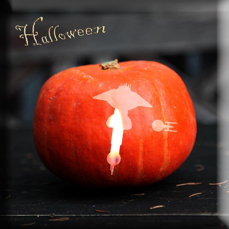 cucurbit Halloween StarBase