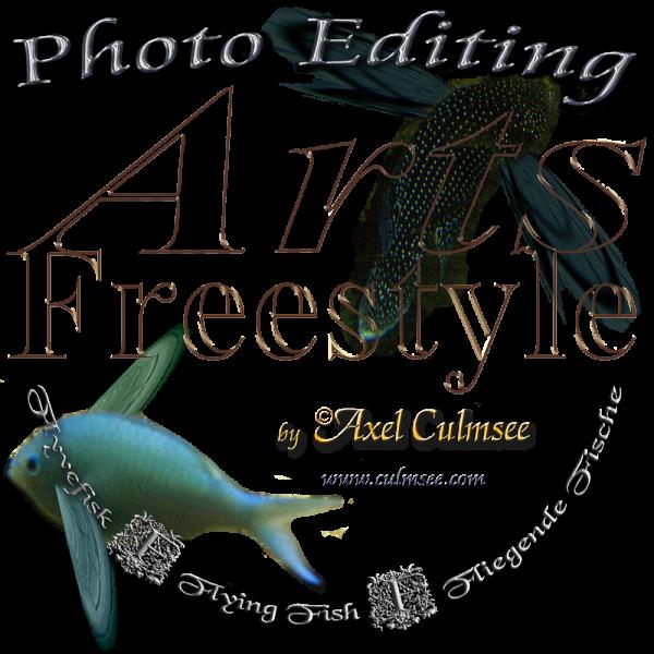 Flying Fish rainbow-Aquarium Arts Freestyle