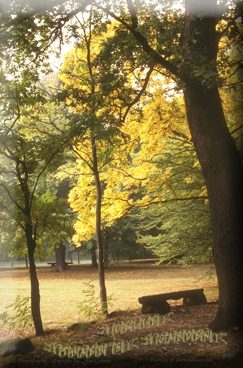 Celle Thaers Garten